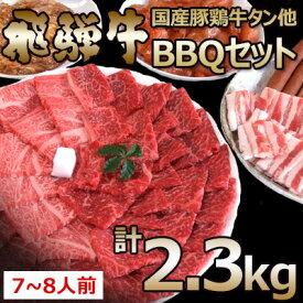 【ふるさと納税】飛騨牛入バーベキューセット 2.3kg