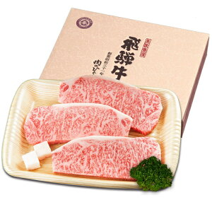 【ふるさと納税】飛騨牛サーロインステーキ(サーロイン500g)