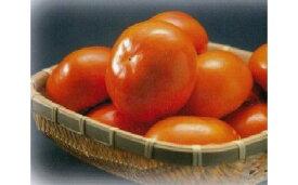 【ふるさと納税】富有柿贈答用12個入り 【果物類/柿】 お届け:11月1日〜25日