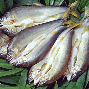 【ふるさと納税】天日干し鮎のひらき 7尾 【魚貝類・鮎・アユ・魚貝類・干物】