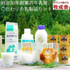 【ふるさと納税】<牧成舎>牛乳 ヨーグルト チーズ よりどり6種セット 飛騨産生乳で作ったこだわりの乳製品セット[B0096]