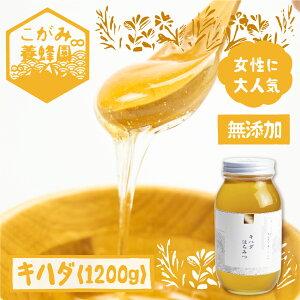【ふるさと納税】キハダ 蜂蜜 1200g はちみつ ハチミツ 国産 非加熱 オーガニック [Q799]