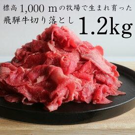【ふるさと納税】飛騨牛 切り落とし 切落し 1.2kg 甘熟メス牛 山勇牛 肉 牛肉[C0015]