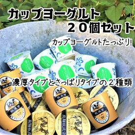 【ふるさと納税】飛騨の牛乳屋こだわり 食べるタイプのヨーグルト2種類盛沢山20個セット[A0093]
