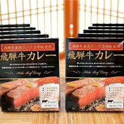 【ふるさと納税】飛騨牛味くらべセットA4種類5食セット[B0072]