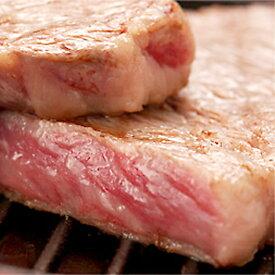 【ふるさと納税】飛騨市推奨特産品 山勇畜産の飛騨牛5等級サーロインブロック肉 700g[J0003]