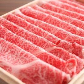 【ふるさと納税】飛騨市推奨特産品 飛騨牛 しゃぶしゃぶ プロ厳選 肩ロース肉[D0016]