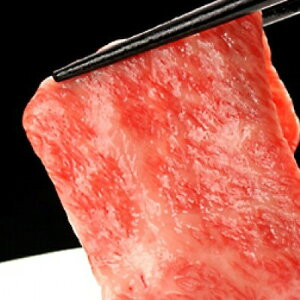 【ふるさと納税】飛騨市推奨特産品 飛騨牛最高級5等級サーロイン本格すき焼き用厚切り 600g 和牛 肉 お歳暮[H0001]