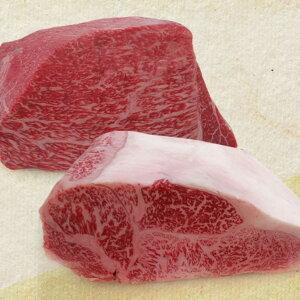 【ふるさと納税】夢の飛騨市産5等級 飛騨牛のブロック肉 ロース2.5kg もも2.5kg 計5kg 塊肉 BBQ[Q399]