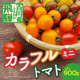 【ふるさと納税】《先行予約》《期間限定・数量限定》飛騨産 トマト ミニトマト カラフルキュートなミニトマトの詰め合わせ900g! とまと[Q779]