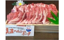 【ふるさと納税】美濃ヘルシーポーク 焼肉用 [0136]
