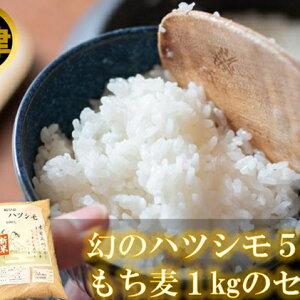 【ふるさと納税】幻の米ハツシモ5kgともち麦1kgセット 【お米・麦】