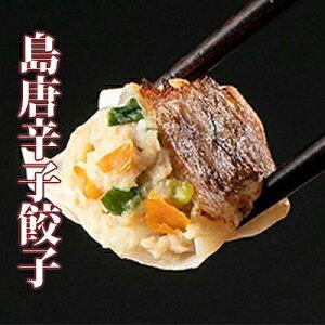 【ふるさと納税】沖縄県産島唐辛子餃子4箱計100個セット 【肉の加工品・加工品・惣菜・冷凍】