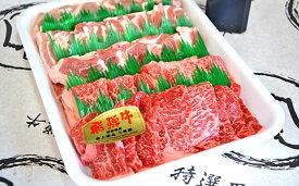 【ふるさと納税】やまちゃん飛騨牛焼肉セット 計約1kg(オリジナルタレ付き) 【お肉・牛肉・ロース】
