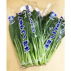 【ふるさと納税】ごうどいい菜4種セット 【野菜・セット・詰合せ・野菜・野菜・ねぎ】