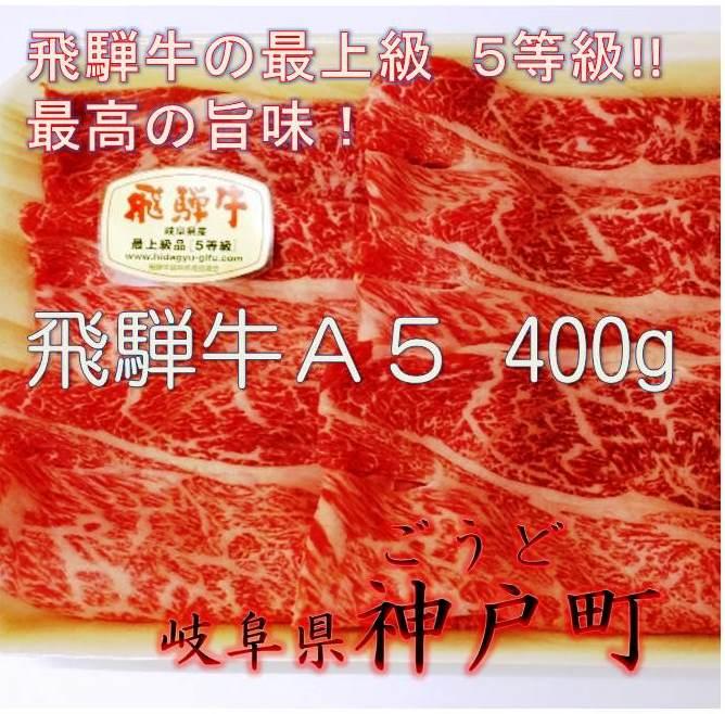 【ふるさと納税】飛騨牛 A5 400g