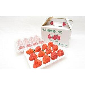 【ふるさと納税】【クレジット限定】贈答用いちご美濃娘 3L 12粒×2パックセット 【果物類・いちご・苺・イチゴ】 お届け:2020年2月29日まで