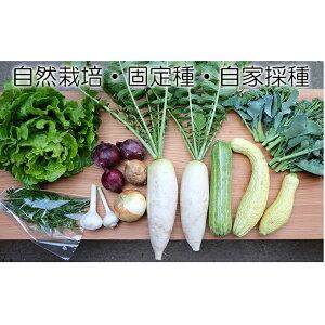 【ふるさと納税】自然栽培 季節のおまかせ野菜セット(固定種・自家採種  約8種類) 【野菜・セット・詰合せ】 お届け:2020年6月〜12月