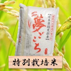 【ふるさと納税】特別栽培米 夢ごこち 精米10kg(分搗き可)または 玄米(11Kg) 30年産