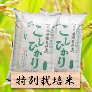 【ふるさと納税】特別栽培米 コシヒカリ 精米20kg(分搗き可)または 玄米(22Kg) 30年産