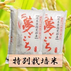【ふるさと納税】特別栽培米 夢ごこち 精米20kg(分搗き可)または 玄米(22Kg) 30年産