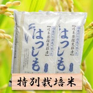 【ふるさと納税】特別栽培米 ハツシモ 精米20kg(分搗き可)または 玄米(22Kg) 30年産