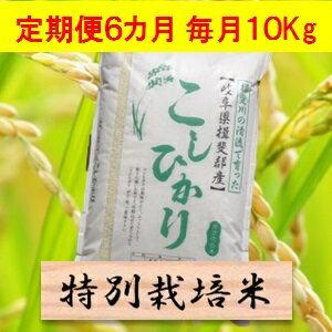 【ふるさと納税】【定期便】特別栽培米 10kg×6カ月 コシヒカリ(分搗き可)または 玄米(1割増) 30年産