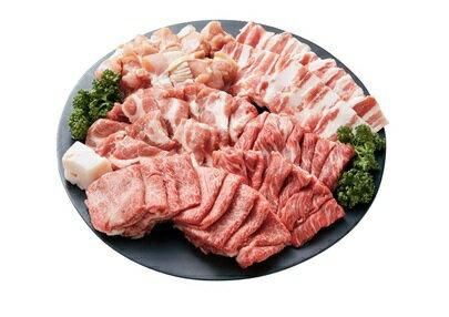 【楽天ふるさと納税】A5等級飛騨牛入り焼肉セット 1kg