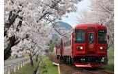 観光列車「ながら」ランチプラン乗車券(ペア)