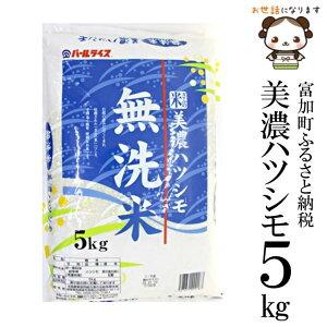 【ふるさと納税】美濃ハツシモ無洗米5kg 令和元年度産