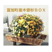 【ふるさと納税】富加町産木曽杉BOX(小)