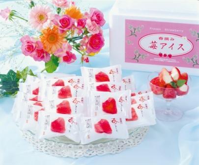 【ふるさと納税】ハーゲンダッツ&苺アイス(A-HDR)