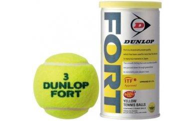 【ふるさと納税】硬式テニスボール 1ケース30缶(1缶2個入り)