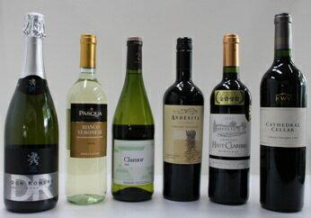【ふるさと納税】ソムリエセレクトのワイン6本セット