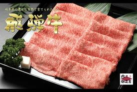 【ふるさと納税】 定期便 飛騨牛 黒毛和牛 和牛 牛肉 カタロース(500g×5回) スライス 最終月に人気の『炭火焼豚』セットが届く 冷蔵 送料無料