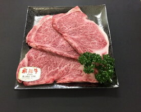 【ふるさと納税】E01「肉のキング」特選飛騨牛5等級 ステーキ(サーロイン800g)