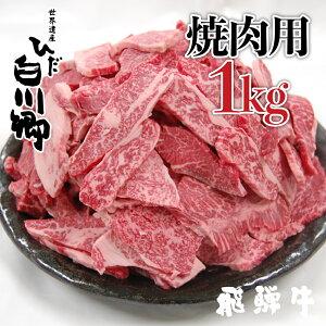 【ふるさと納税】飛騨牛 焼肉 1kg 訳あり 不揃い 牛肉 肉 バーベキュー BBQ 焼き肉 カルビ セット 和牛 贈答 ギフト 焼き肉 切り落とし わけあり [S201]