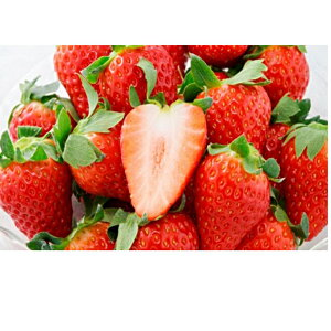 【ふるさと納税】キラっと輝くいちご『きらぴ香』2箱4パック 【果物類・いちご・苺・イチゴ】 お届け:2020年2月上旬〜4月中旬
