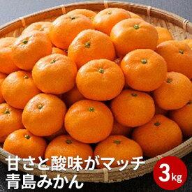【ふるさと納税】【2022年1月上旬より順次発送】甘さと酸味がマッチ 青島みかん3kg 【果物類・柑橘類・みかん・フルーツ・ミカン】 お届け:2022年1月上旬〜2022年2月中旬