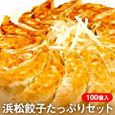 【ふるさと納税】ちくや浜松餃子たっぷりセット(無添加ぎょうざ100個) 【加工品・ぎょうざ】