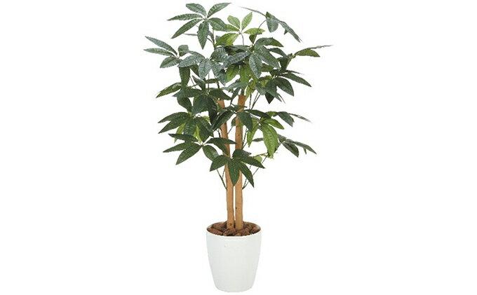 【ふるさと納税】光の楽園 パキラ90cm (観葉植物)