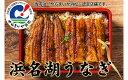 【ふるさと納税】浜名湖うなぎ(SF04)刻みうなぎ5食 【うなぎ・鰻】