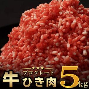【ふるさと納税】大ボリューム!牛ひき肉5kgセット