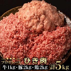 【ふるさと納税】大ボリューム!牛・豚・鶏ひき肉3種5kgセット[GOEI01-p]