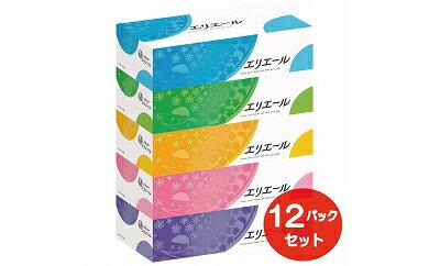 【ふるさと納税】エリエールティシュー 180W5P×12パック (60箱)