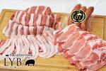 【ふるさと納税】ルイビ豚焼肉セット(冷凍)