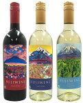 【ふるさと納税】富士山ワイナリーワイン3本セット
