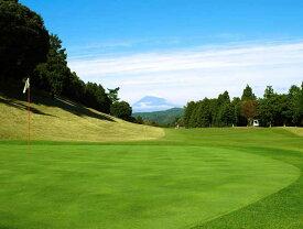 伊東カントリークラブ 平日ゴルフ18ホール セルフペアプレー券(2名様)【ふるさと納税】