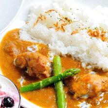 伊豆高原ケニーズハウスのレトルトセット(チキンカレー230g×10食)【ふるさと納税】