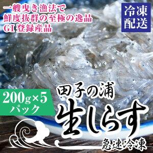 【ふるさと納税】1554一艘曳き漁法「田子の浦」生しらす 冷凍200g×5個セット
